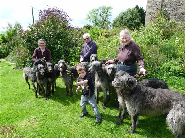 Lachie and Deerhounds